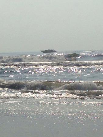 Matador Oceanfront Resort: photo2.jpg