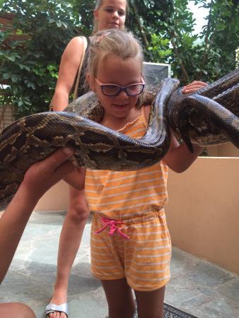 Aquaworld Aquarium & Reptile Rescue Centre: photo0.jpg
