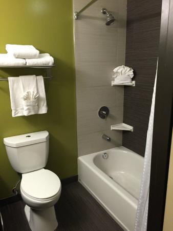 Holiday Inn North Phoenix : BAgno