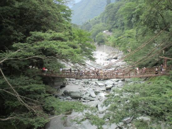 Iyakei Valley: 祖谷渓にかかるかづら橋です