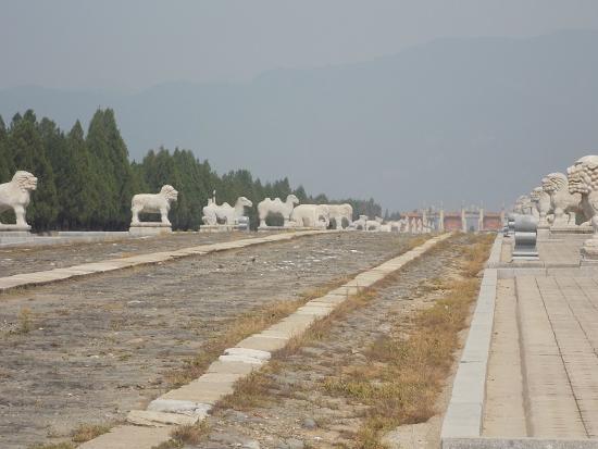 Zunhua, จีน: Spirit Way