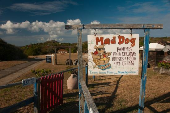 nice bar but - Review of Mad Dog Cafe, Virgin Gorda