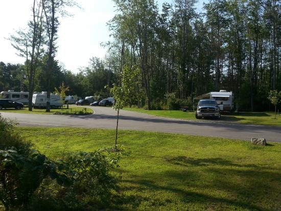 Hid'n Pines Family Campground: OUR SITE