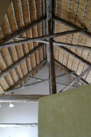 AmaZulu Lodge: Plafond kamers
