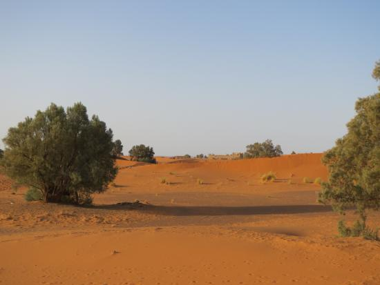 Auberge Les Pyramides: Le dune