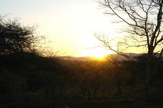 Zululand Safari Lodge: Sunset view from the lodge