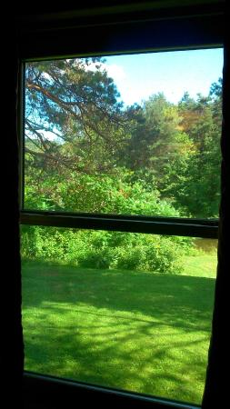 West Gate Inn: view from window