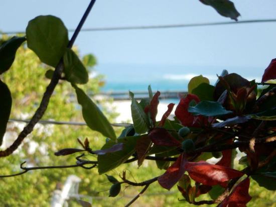Coqui del Mar Guest House: View of the ocean from the 2nd Fl. walk way