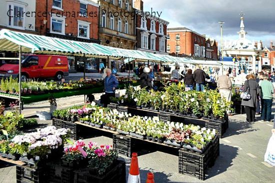 Beverley Market