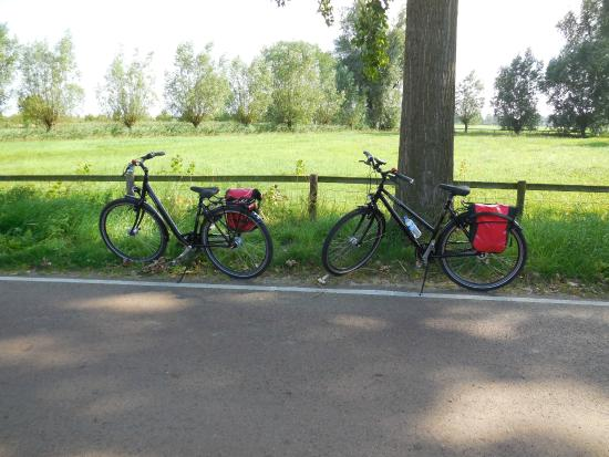 Holland Bike Tours: Our bikes