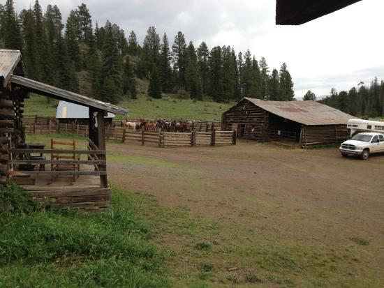 Sprucedale guest ranch updated 2017 reviews alpine az for Sprucedale ranch