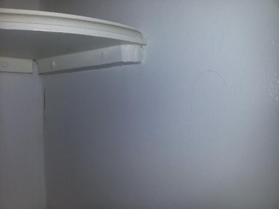 Castleview House: Peli e capelli in bagno. Vista dalla stanza.