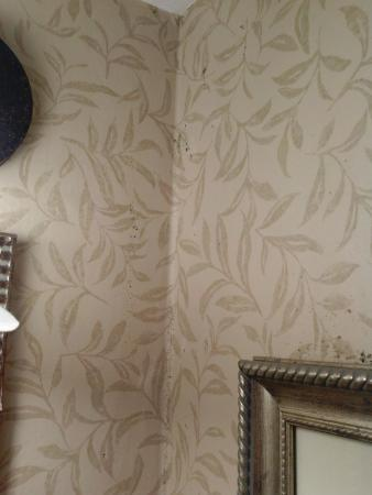 Red Lion Hotel Pocatello : Corner of bathroom mold and above picture