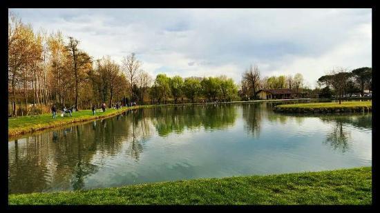 Vista lago photo de agriturismo lago orzaie di pizzinato for Cabine spartiacque vista lago fontana