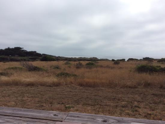 Sea Ranch Escape