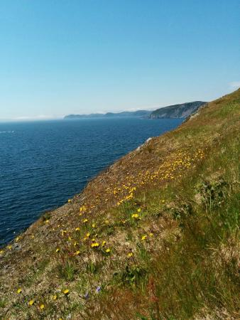 The Rolling Hills: Skerwink Trail
