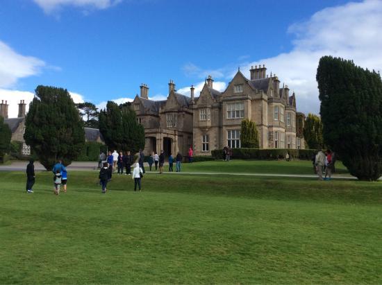 Killarney House Gardens : photo0.jpg