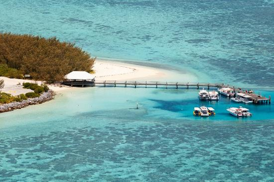 Heron Island Resort Updated 2018 Prices Amp Resort All