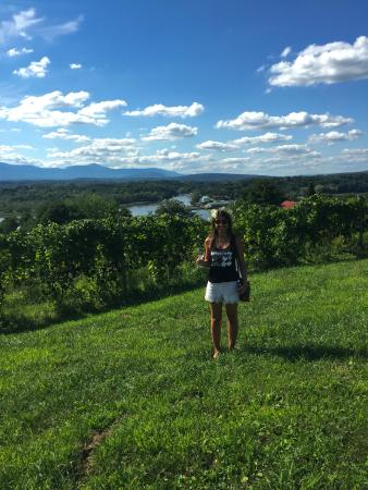 Germantown, Nowy Jork: Bride to Be at Tousey Winery