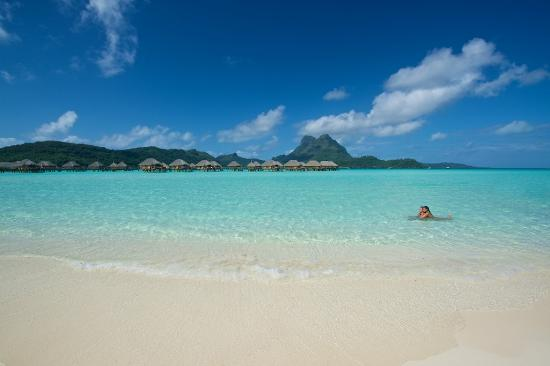 bora bora pearl beach resort amp spa updated 2018 prices
