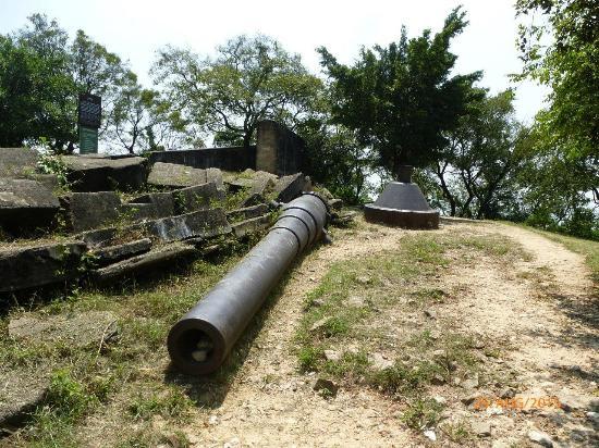 Weiyuan Fort: Big Gun
