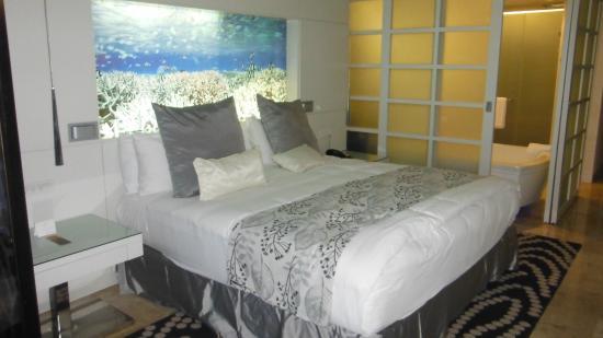 Paradisus By Melia Playa del Carmen La Perla: habitacion amplia y hermosa