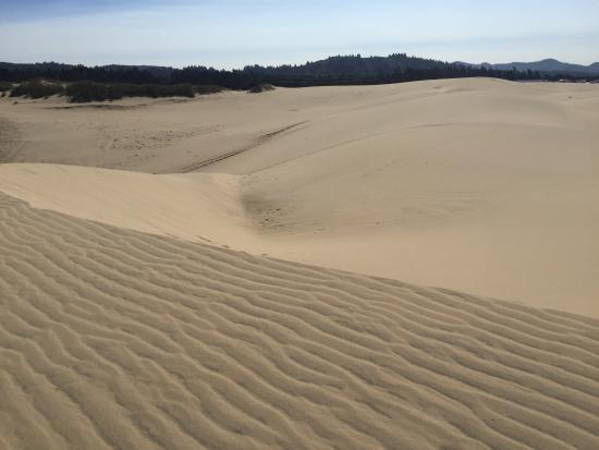 Florence, Oregón: Sand Master Park