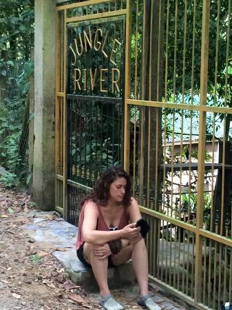 Jungle River Lodge : The front gate