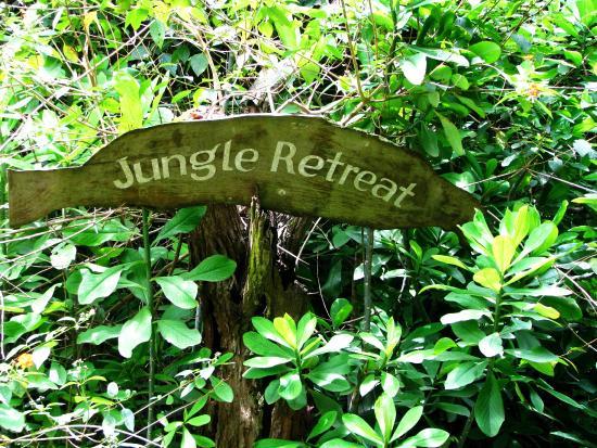 Jungle Retreat: sign board