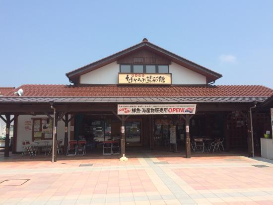 Michi no Eki Araessa