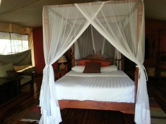Mara Leisure Camp: Luxury On Safari