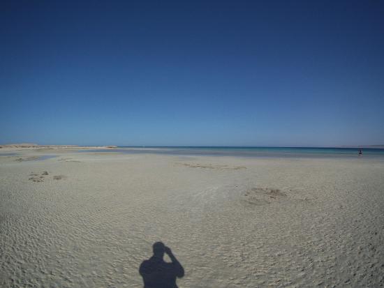 Sharm El Luli Jindy Loli