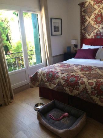 Accueil pour chien en chambre - Picture of Hotel Le Pigonnet ...
