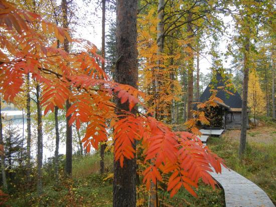 Isokenkaisten Klubi: Colours of the autumn time