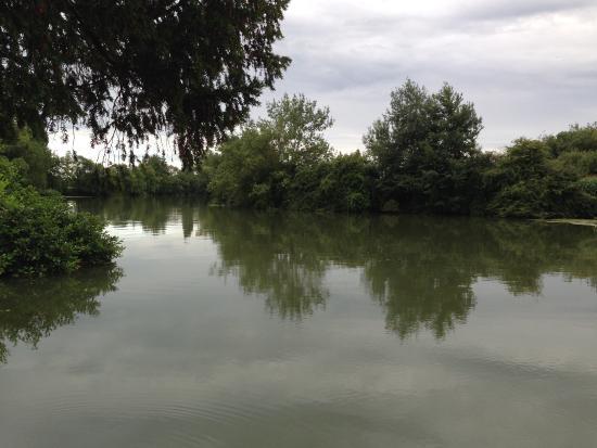 Luche-Pringe, ฝรั่งเศส: photo2.jpg