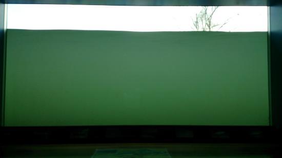 Iyoboya Kaikan: 濁っていて三面川は見えませんでした