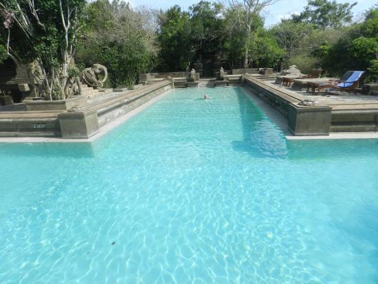 The swimming pool - Bild von Forest Rock Garden Resort ...