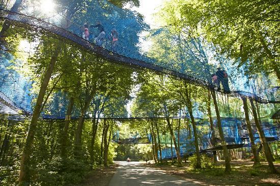 Maisnil-les-Ruitz, فرنسا: Le parcours de filets suspendus