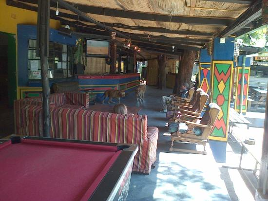 Shoestrings Backpackers Lodge: bar area