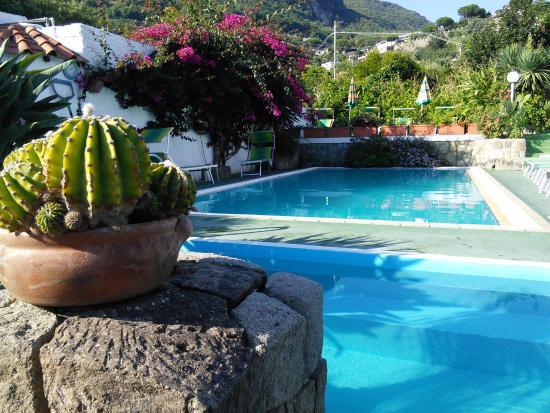 Hotel Villa Janto: La piscina