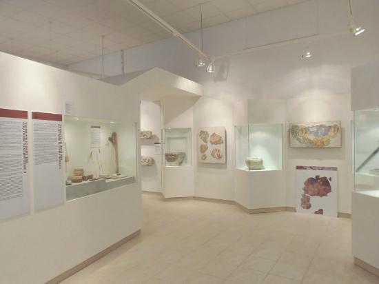 Museo Civico Antonio Cerutti