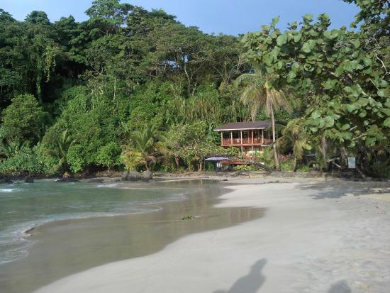Red Frog Beach Island Resort Certified For Its: Foto De Red Frog Beach Island Resort, Isla Bastimentos
