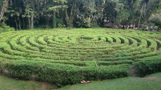 Jaragua Do Sul, SC: Labirinto