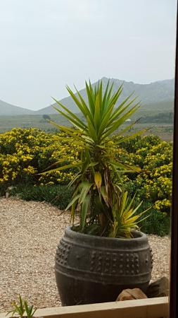 Kapensis Guesthouse : The view from bed!