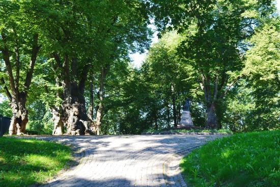 Linda Monument: Старые деревья, липы, окружают памятник