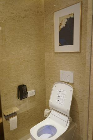 Phenomenal Toilet Comes With Washing Toilet Seat Picture Of Jw Theyellowbook Wood Chair Design Ideas Theyellowbookinfo
