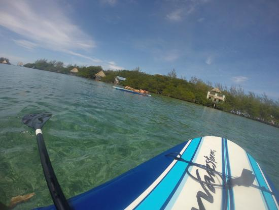 Coco Plum Island Resort: Honeymoon