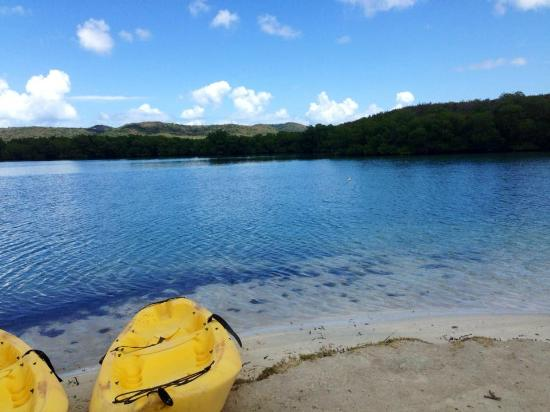Esperanza, Puerto Rico: Melaya's Tours