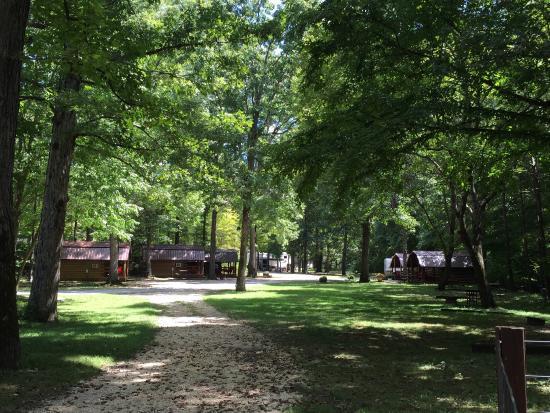 Buffalo KOA Campgrounds