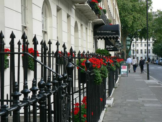 Picture Of The Montague On The Gardens London Tripadvisor